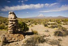 Sajama vulkaan in Bolivië Stock Foto's