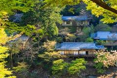 Sakano火车视图,京都在日本 免版税库存照片