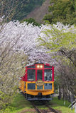 Sakano Romantic Train in Kyoto, Japan. KYOTO, JAPAN - APRIL 06 : Sakano Romantic Train, a sightseeing retro train that runs along mountain pass through sakura Stock Image