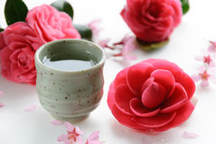 Sake with Camellia flowers and cherry blossom Stock Photos