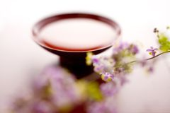 Sake and Thalictrum rochebrunianum Royalty Free Stock Photography