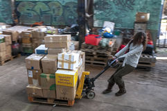 Sakeenah Feghir from BookCycle UK pulling a pallet of books Royalty Free Stock Image