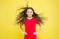 Saker dig som gör för att skada ditt hår Bakgrund för krabbt hår för förtjusande unge för flicka lång gul Vind kan också skada hå royaltyfri fotografi