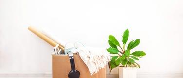 Saker som flyttar sig som ska boxas, en blomma i en krukajn en vit bakgrundsförsäljning hemifrån och den rörande begreppskopian g Arkivbild