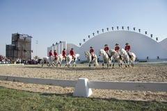 Sakhir, Bahrain il 26 novembre: Esposizione degli Stallions di Lipizzaner Fotografia Stock Libera da Diritti