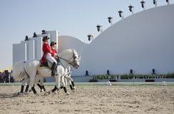 Sakhir, Bahrein el 26 de noviembre: Sho de los sementales de Lipizzaner Fotos de archivo