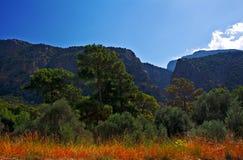 Saklikent Gorge, Turkey Stock Photography