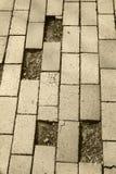 Saknade trottoartegelstenar Arkivfoto