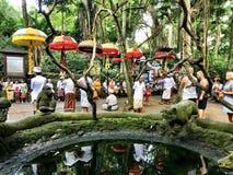Sakral apa Forest Sanctuary, Padangtegal, Ubud, Bali Indonesien Arkivfoto