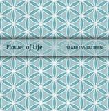 Sakral geometri, pappers- sömlös modell`-blomma av liv`, Royaltyfria Foton