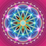 Sakral geometriblomma royaltyfri illustrationer