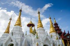 Sakral hårrelik som väl tvättar sig på den Shwedagon pagoden Arkivfoto