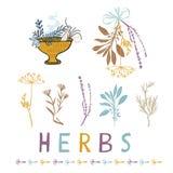 Sakral torkad Herb Bunches Vector Illustration Icon uppsättning royaltyfri illustrationer