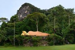 Sakral vilaBuddhastaty i det djungelskogKrabi landskapet, Royaltyfri Fotografi