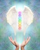 Sakrala Angel Chakra Healing Royaltyfri Bild