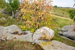 Sakrala stenar i området av byn av Krasnogorye i Ryssland arkivbilder
