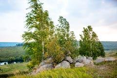 Sakrala stenar i området av byn av Krasnogorye i Ryssland royaltyfria bilder