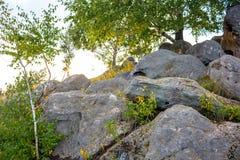 Sakrala stenar i området av byn av Krasnogorye i Ryssland arkivfoton