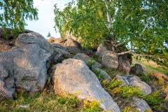 Sakrala stenar i området av byn av Krasnogorye i Ryssland fotografering för bildbyråer