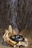 Sakralt trä, Burseragraveolens arkivfoton