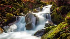 Sakta vatten Arkivfoton