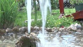 Sakta vattennedgångar in i vattnet från en liten springbrunn i borggården stock video