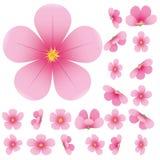 sakura λουλουδιών διανυσματική απεικόνιση