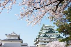 Sakura Νάγκουα Castle στοκ εικόνα με δικαίωμα ελεύθερης χρήσης