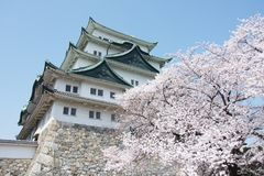 Sakura Νάγκουα Castle στοκ φωτογραφία