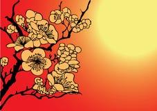 Sakura. Japanese style sakura  illustration Stock Image