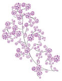 Sakura Foto de archivo