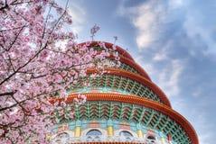 Sakura Stock Image