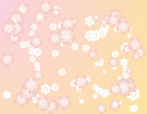Sakura background Royalty Free Stock Images