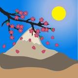 Sakura bakgrund Arkivfoto
