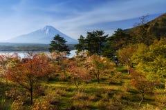 Sakura bij Shoji-meer met MT fuji Stock Foto's