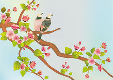 Sakura bird. postcard Stock Photo