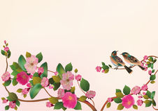 Sakura bird. postcard Stock Images