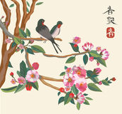 Sakura ,bird , spring , postcard . Royalty Free Stock Photos