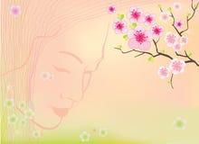 Sakura blüht Hintergrund Stockfoto