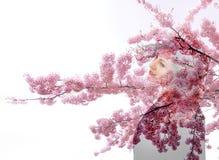 Sakura blom parkerar för flickaregn för solen den körsbärsröda kvinnan för lynnet för dubbel exponering för våren för kvinnan för arkivfoton