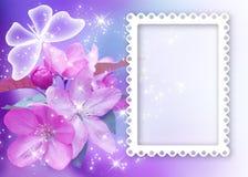 Sakura blomning med fjärils- och fotoramen Royaltyfri Bild