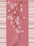 Sakura blossom. Illustration for you designe vector illustration