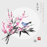 Sakura in blossom, bamboo branch and little bird Stock Images