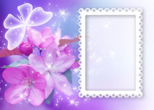 Sakura blossom with butterfly and photo frame Royalty Free Stock Image