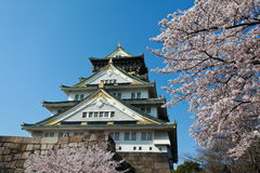 Sakura blossom at Osaka Castle. Japannancient, architecture, asia, attraction, beautiful, building, castle, culture, emperor, feudal, garden, heritage, japan Stock Photos