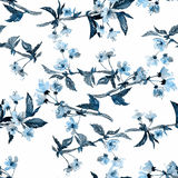Sakura blossom pattern. Seamless watercolor pattern. Sakura blossom, blue hues on white background. Textile print stock illustration