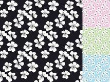 Sakura blossom vector seamless pattern. Royalty Free Stock Photo