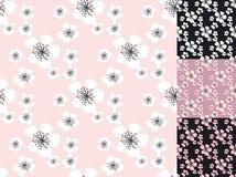 Sakura blossom vector seamless pattern. Stock Photos