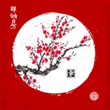 Sakura blossom in white circle on red background. Traditional oriental ink painting sumi-e, u-sin, go-hua. Contains. Hieroglyphs - zen, freedom, nature Royalty Free Stock Image