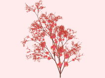 Sakura blossoms art Stock Photo